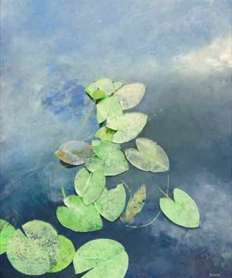 Aguas cubiertas de hojas, de Ángel Busca